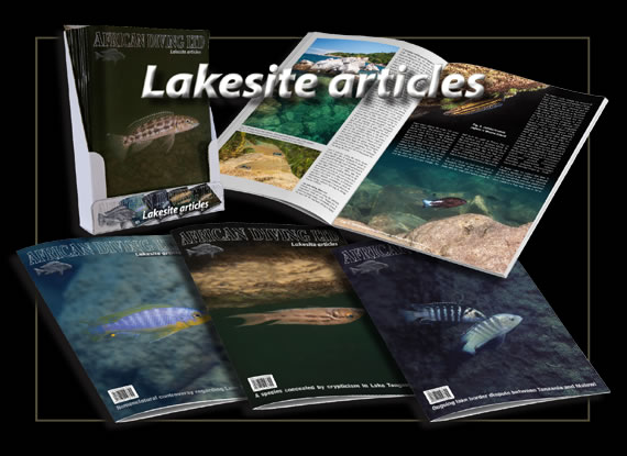 Promotional picture of Lakesite articles